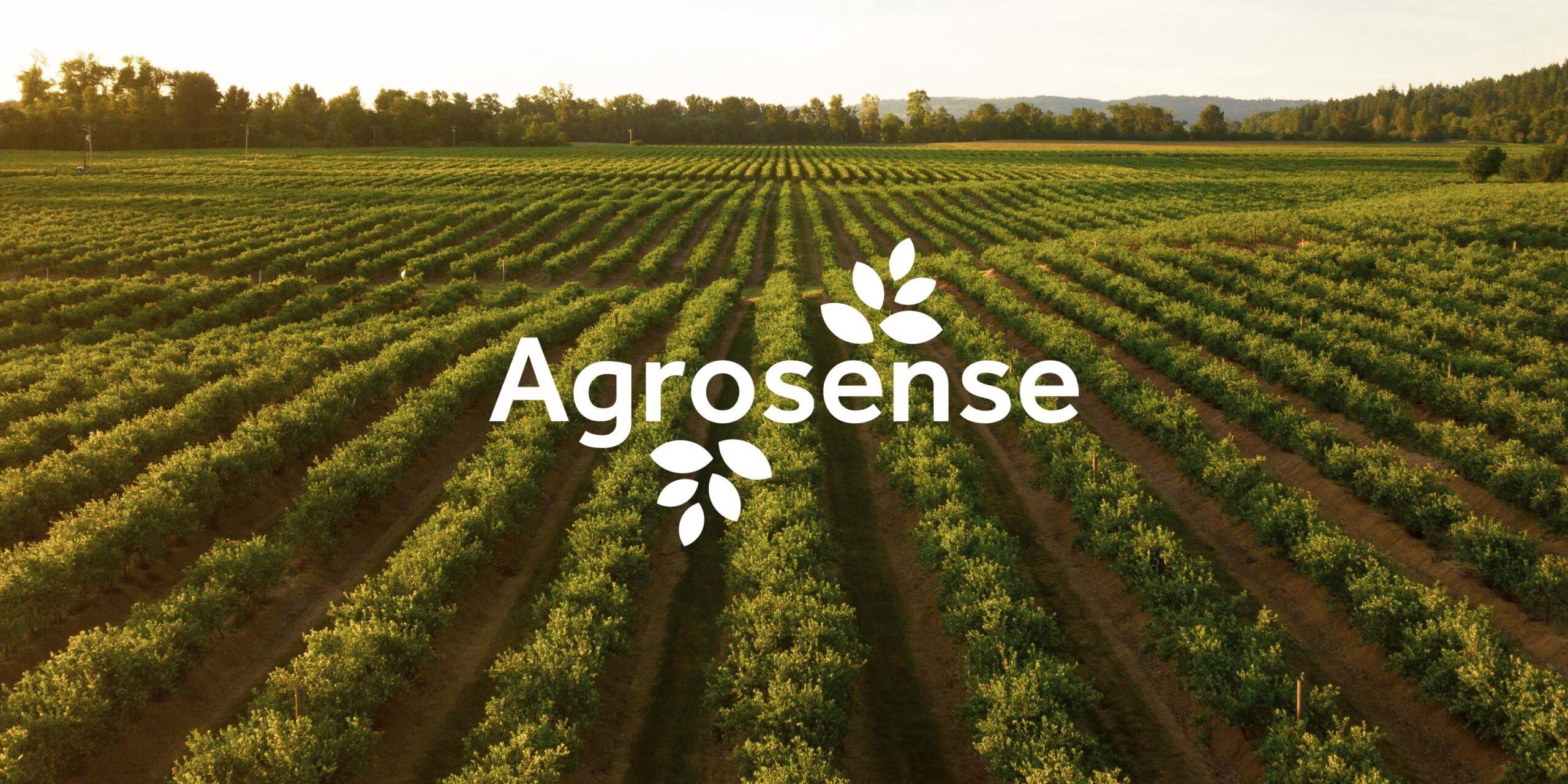 Agrosense Logo Banner